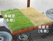 tokuchou-05-2.jpg
